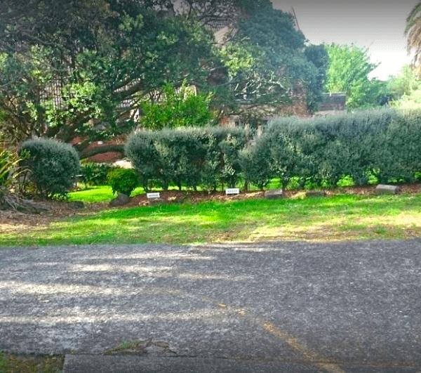 St Columba Centre-outside greens